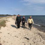 Strand Forkælelsesdag Hjarnø